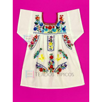 Girl's Multicolor Embroidered Dress White, Size 0
